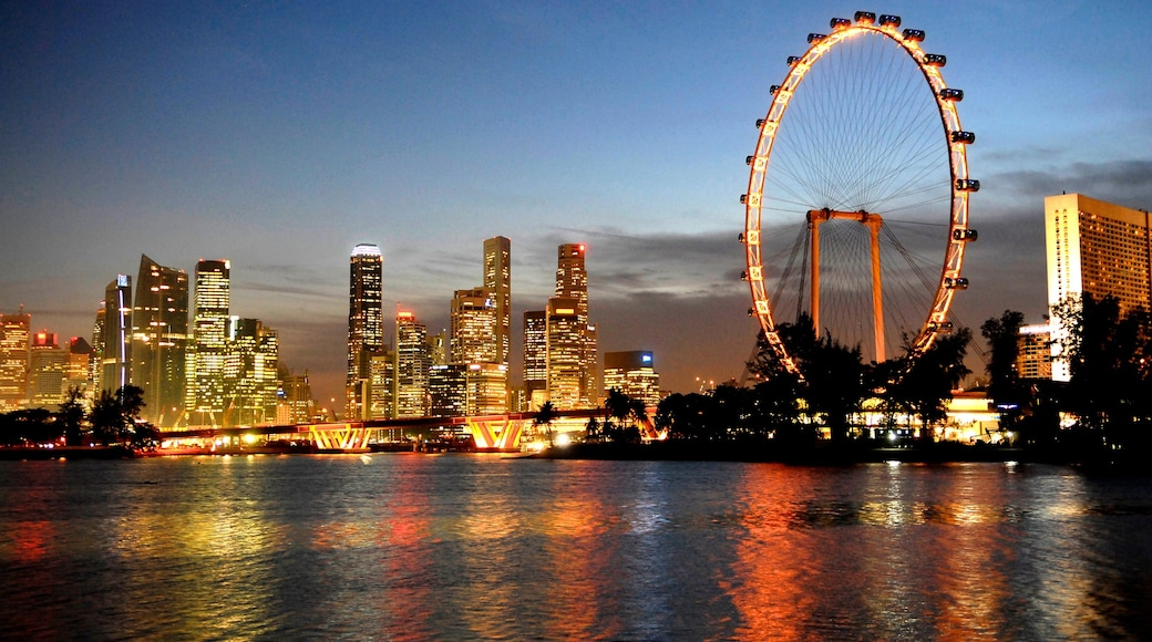 Singapore Flyer showing skyline, modern architecture and a city