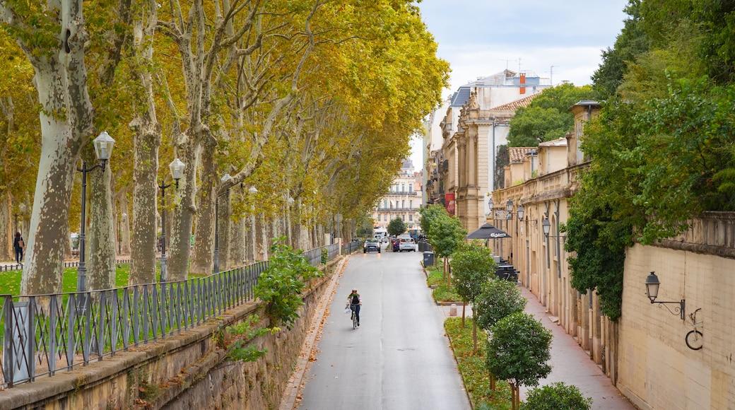 Quartiers des Beaux Arts et Boutonnet