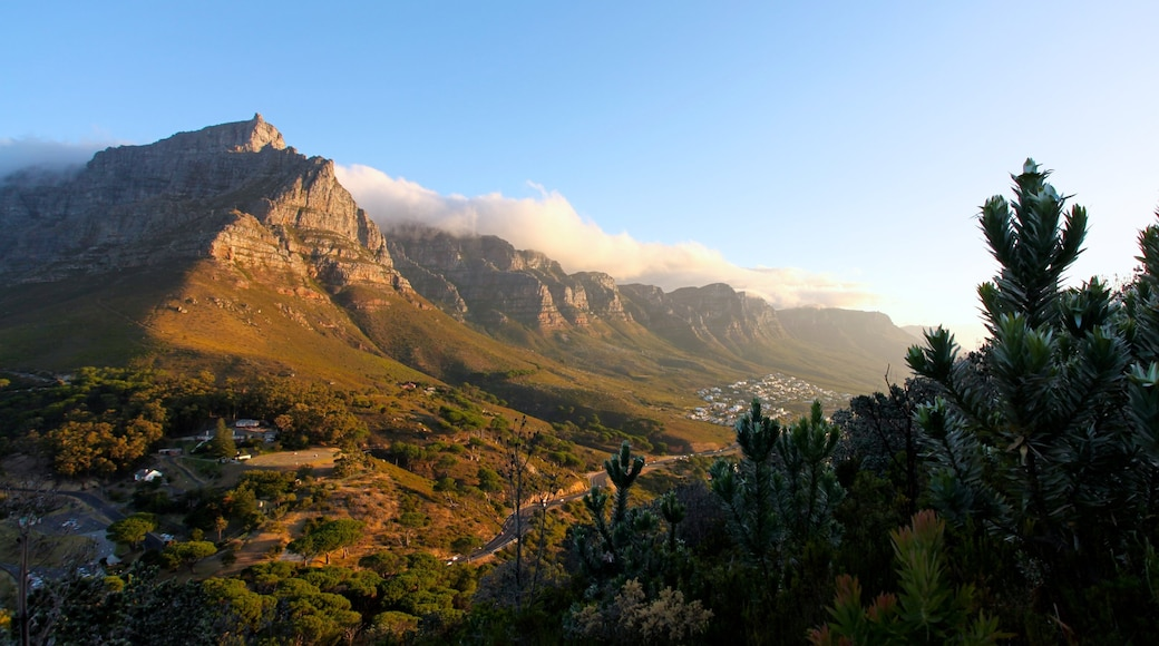 Table Mountain which includes landscape views and mountains
