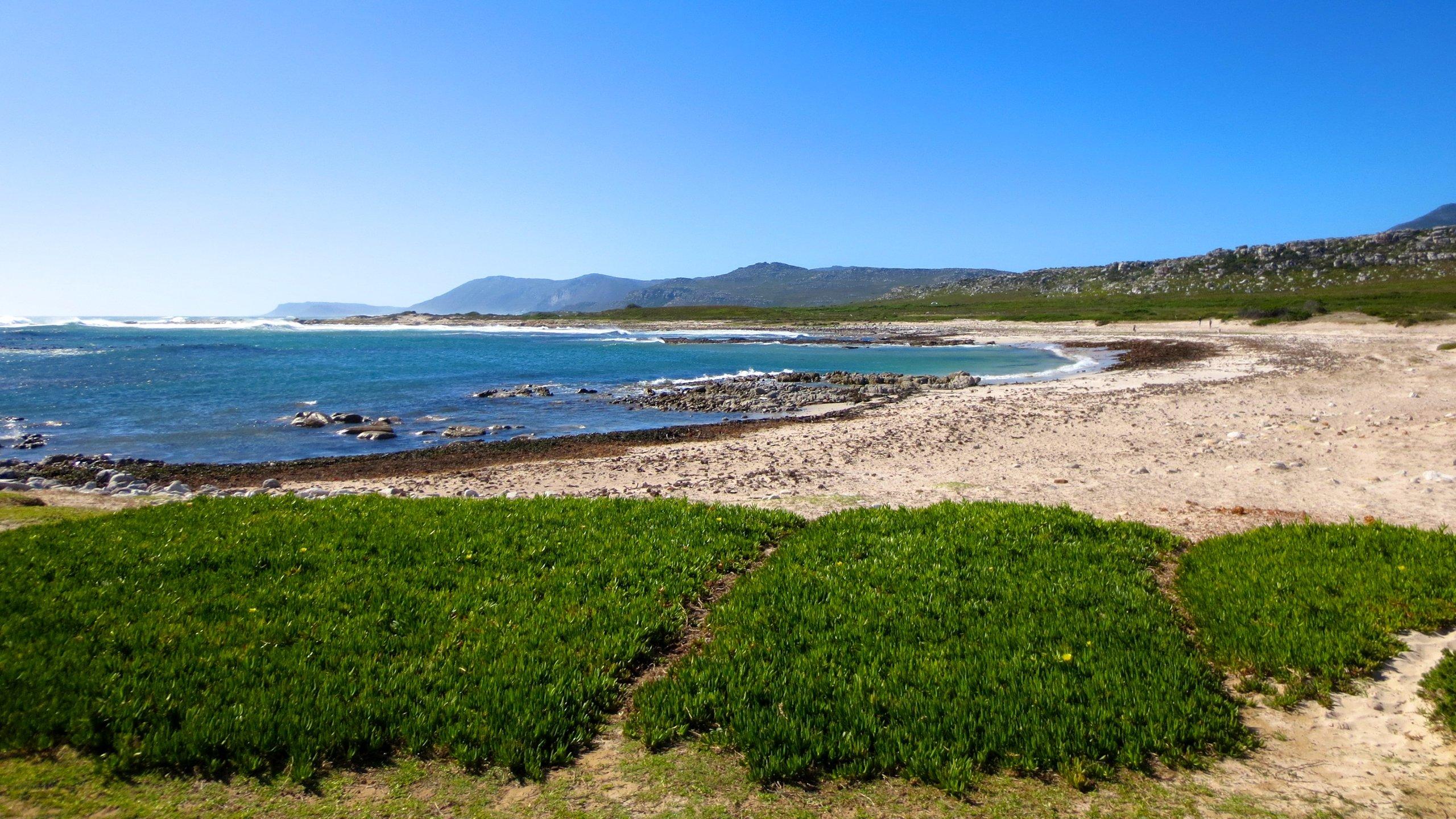 Cape Peninsula, Cape Town, Western Cape, South Africa