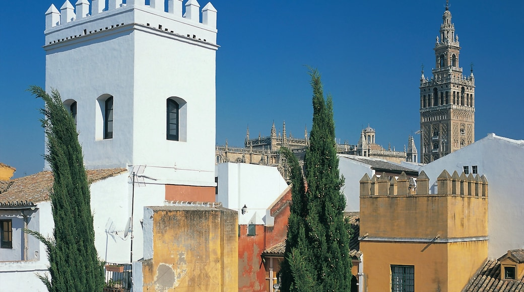 Seville which includes a city and heritage architecture