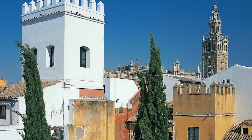 Sevilla que incluye una ciudad y arquitectura patrimonial