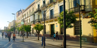Seville featuring street scenes and a city