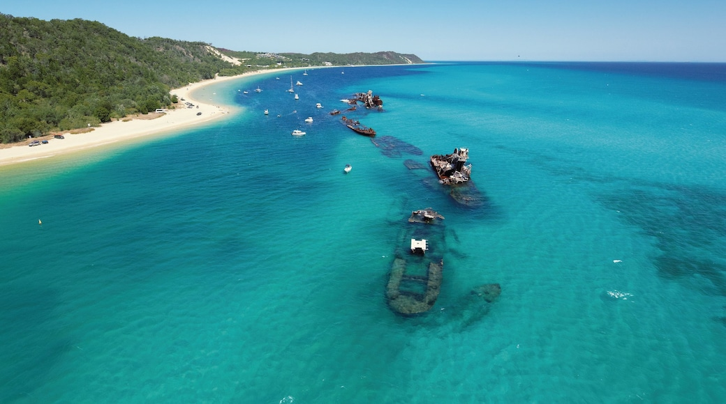 Tangalooma which includes tropical scenes, a sandy beach and general coastal views