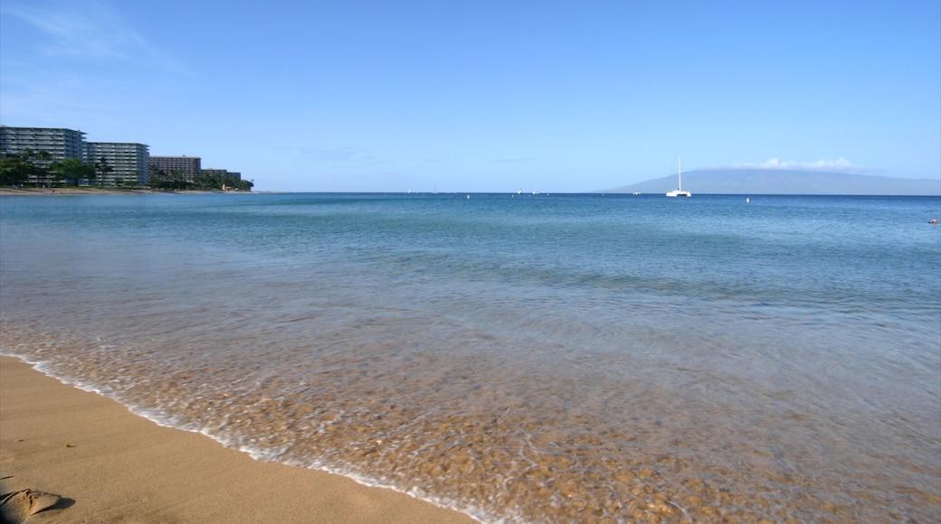 Kapalua Beach featuring a beach