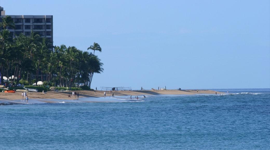 Kapalua Beach featuring landscape views