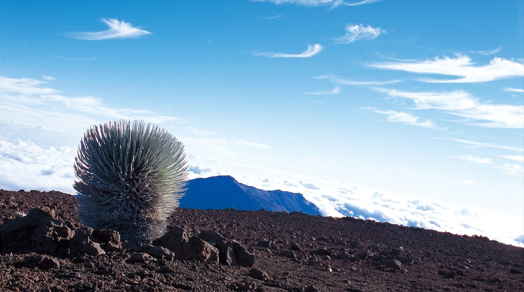 Haleakala Crater showing tranquil scenes and desert views