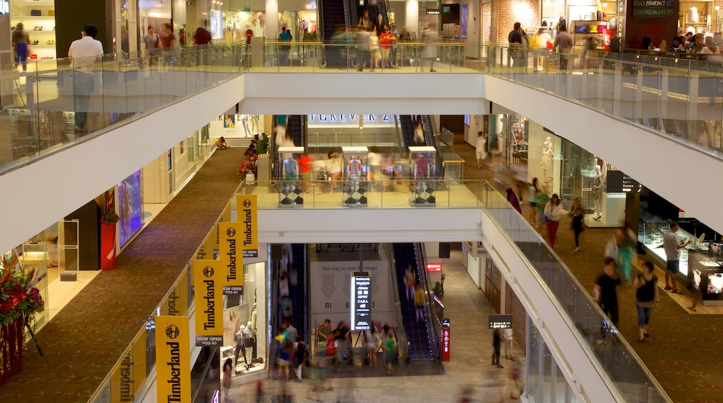 Singapore which includes interior views and shopping