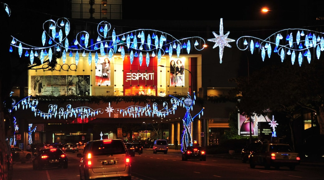 Orchard Road showing night scenes and signage