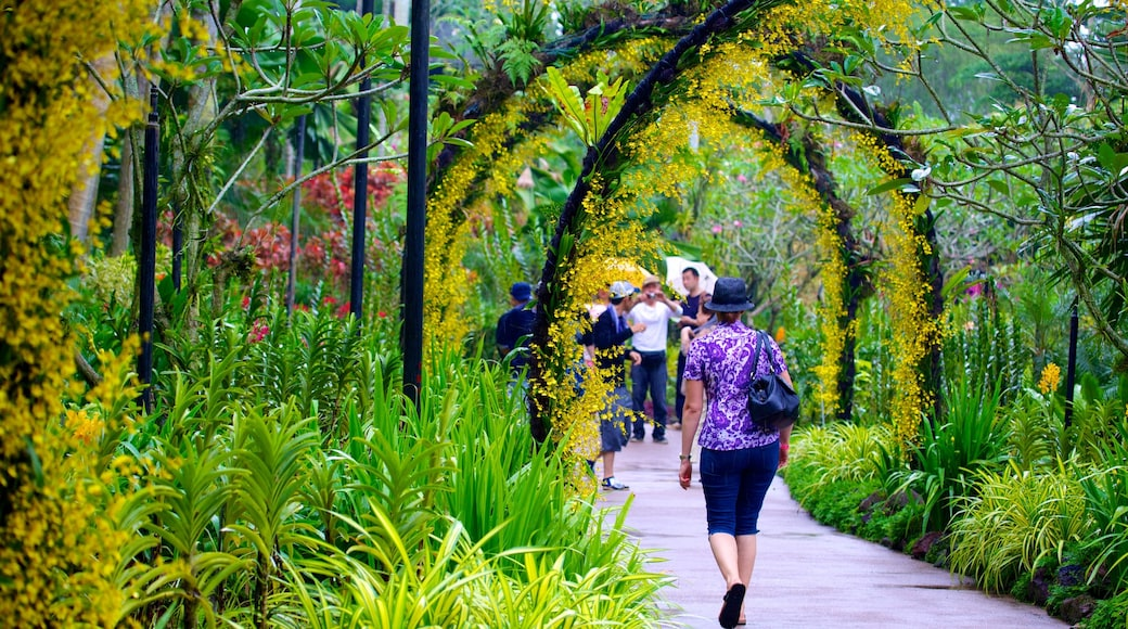 National Orchid Garden which includes a garden as well as an individual female
