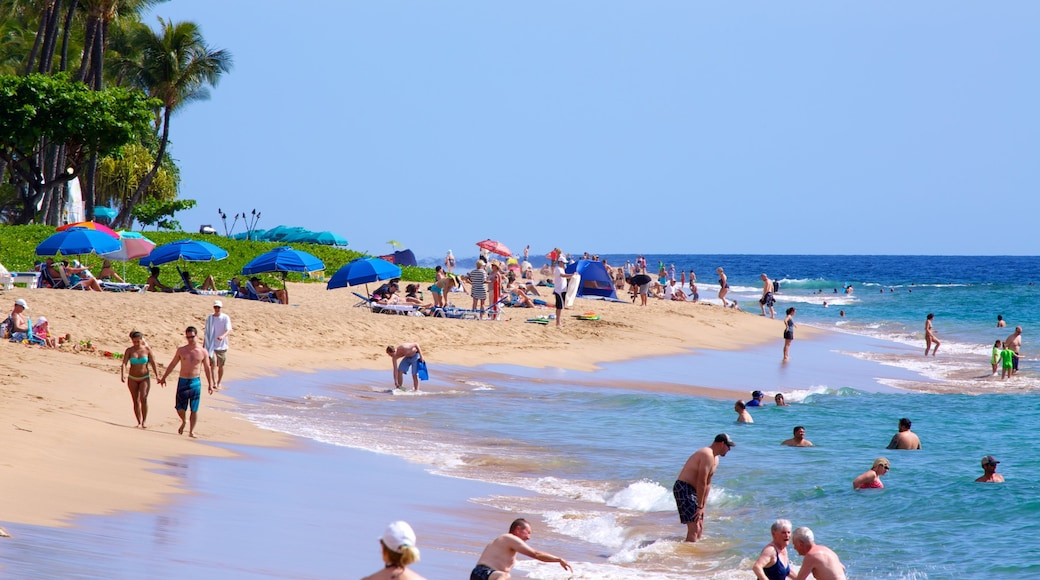 Kaanapali Beach featuring a beach, tropical scenes and swimming