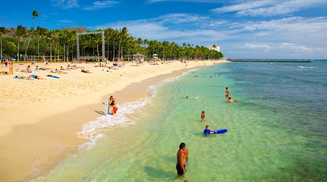 Kapiolani Park showing tropical scenes, a sandy beach and swimming