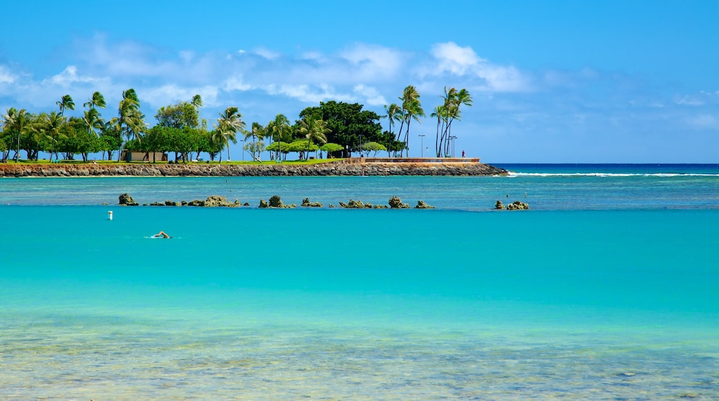 Ala Moana Beach Park que inclui cenas tropicais, paisagens litorâneas e natação