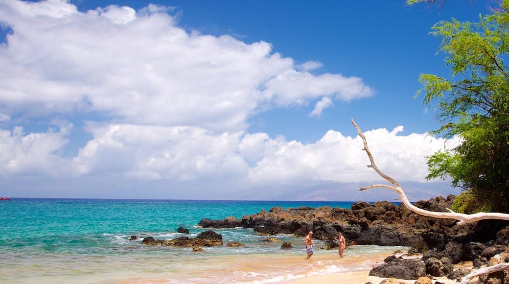 Maluaka Beach showing a sandy beach, tropical scenes and landscape views