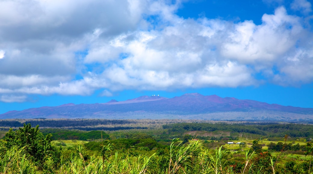 Mauna Kea showing landscape views