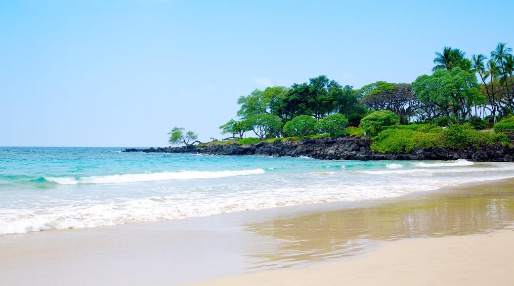 Mauna Kea das einen Landschaften, tropische Szenerien und Sandstrand