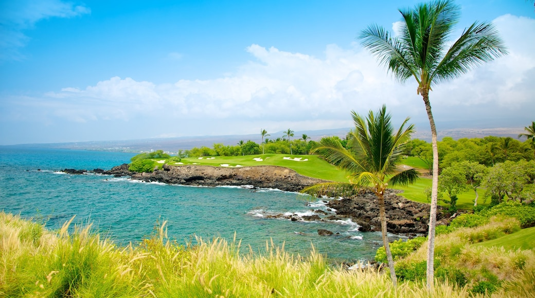 Mauna Kea showing landscape views, tropical scenes and rugged coastline