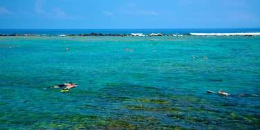 Kahalu\'u Beach Park featuring snorkeling, landscape views and colorful reefs