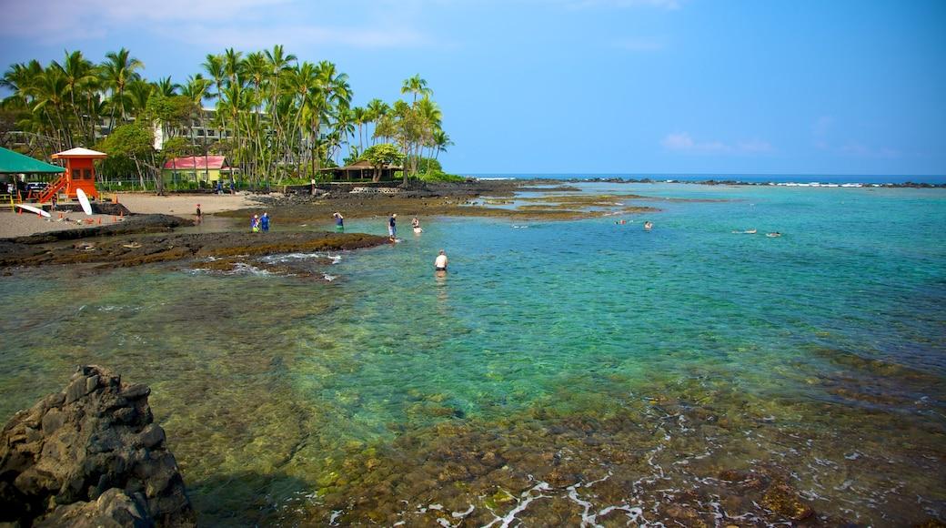 Kahalu\'u Beach Park which includes general coastal views and tropical scenes