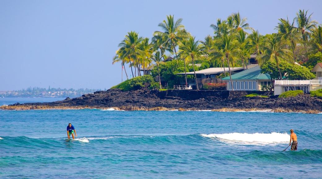 Kahalu\'u Beach Park featuring rugged coastline, a coastal town and tropical scenes
