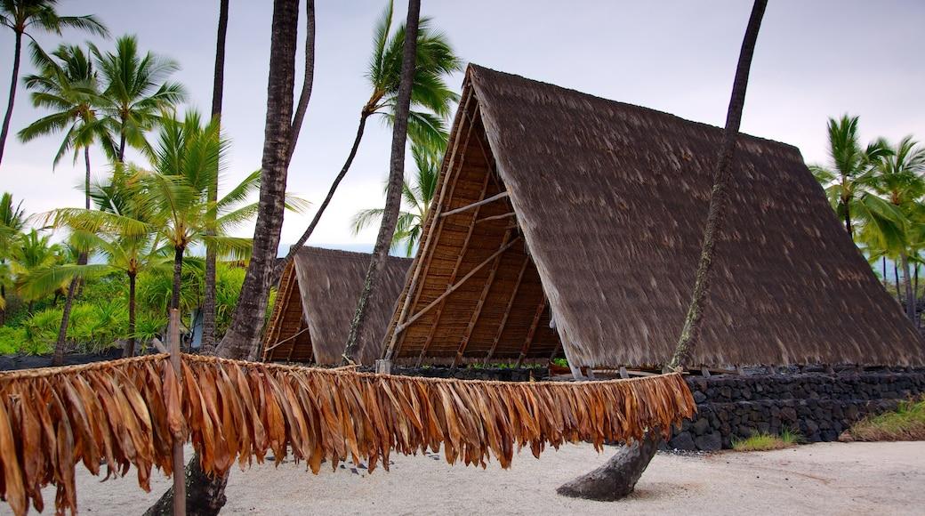 Pu\'uhonua o Honaunau National Historical Park featuring a sandy beach, tropical scenes and general coastal views