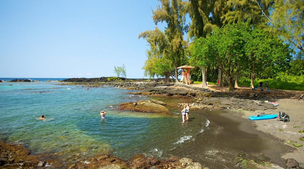 Richardson\'s Ocean Park showing a beach and landscape views