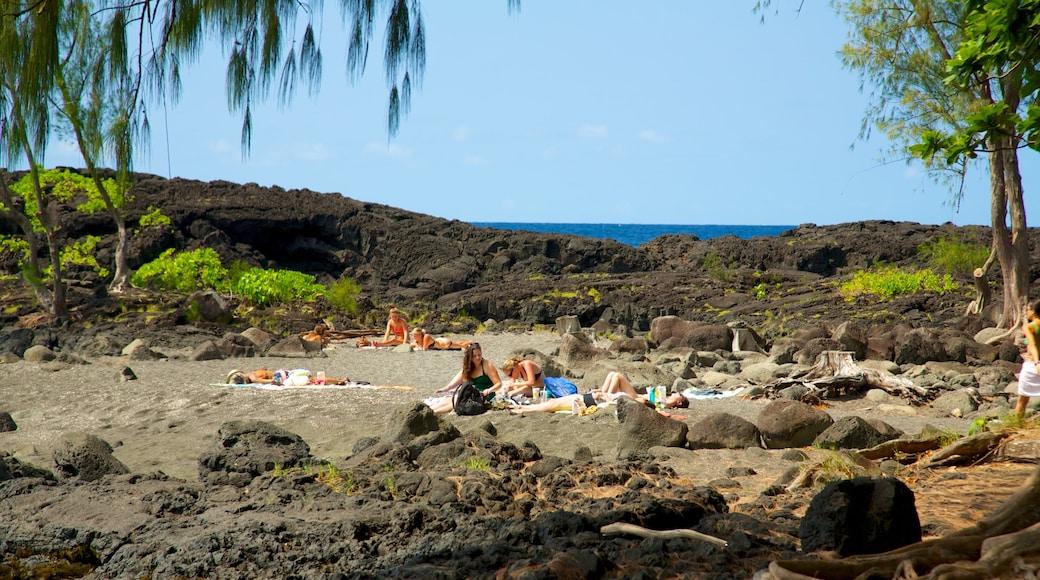 Richardson\'s Ocean Park which includes a park and landscape views