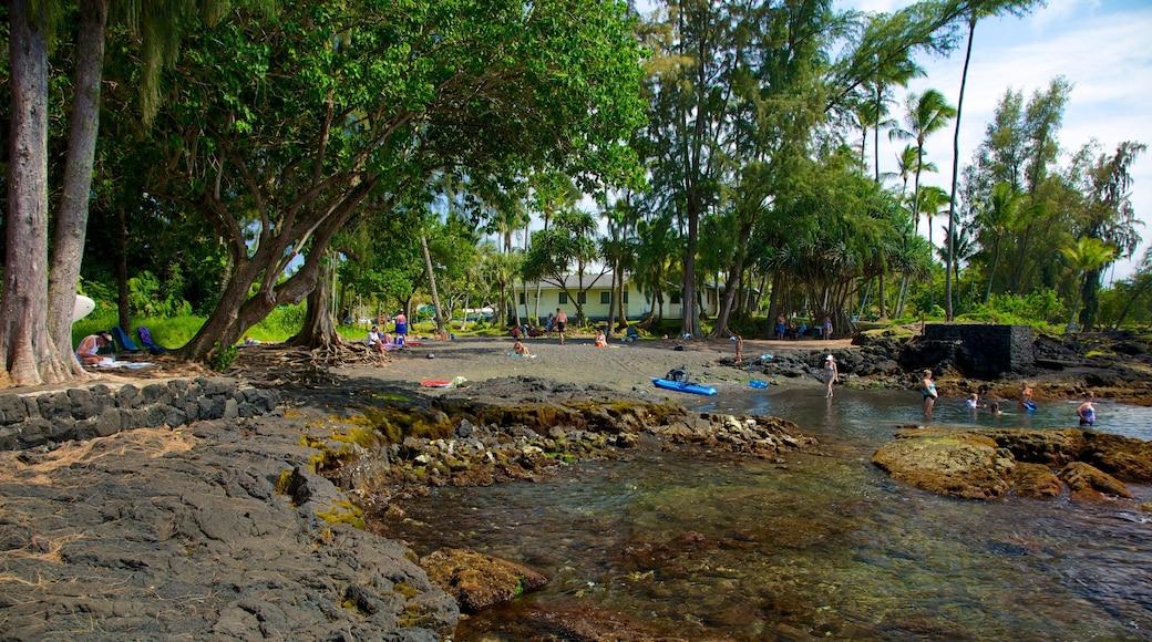 Richardson\'s Ocean Park featuring a pebble beach, landscape views and a garden
