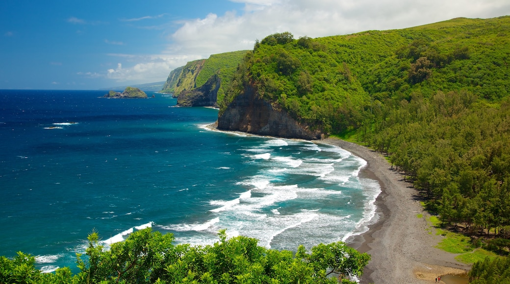 Hawaii which includes general coastal views, landscape views and views
