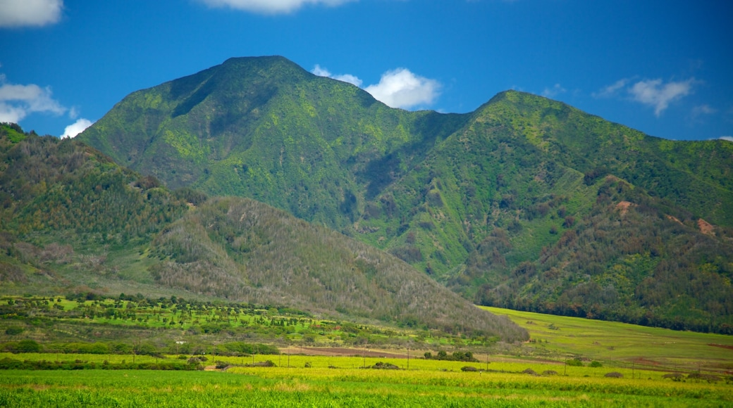 Maui Island which includes mountains and landscape views