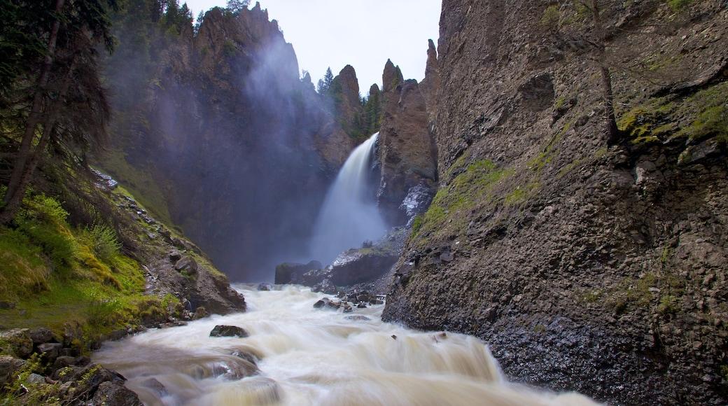 Yellowstone-Nationalpark welches beinhaltet Stromschnellen, Berge und Landschaften