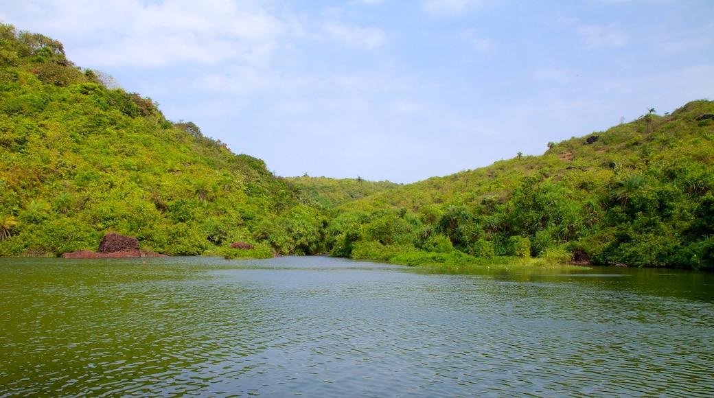 Lago Arambol Sweet Water que inclui um lago ou charco e paisagem