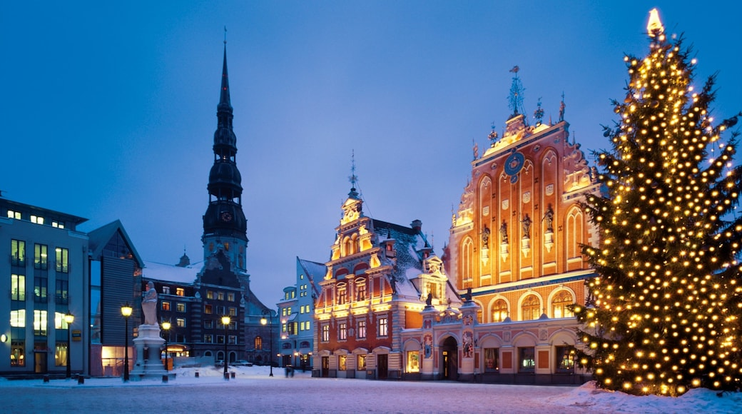 Riga showing heritage architecture, snow and a city