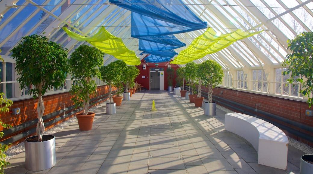 Queen\'s Park featuring interior views and a garden