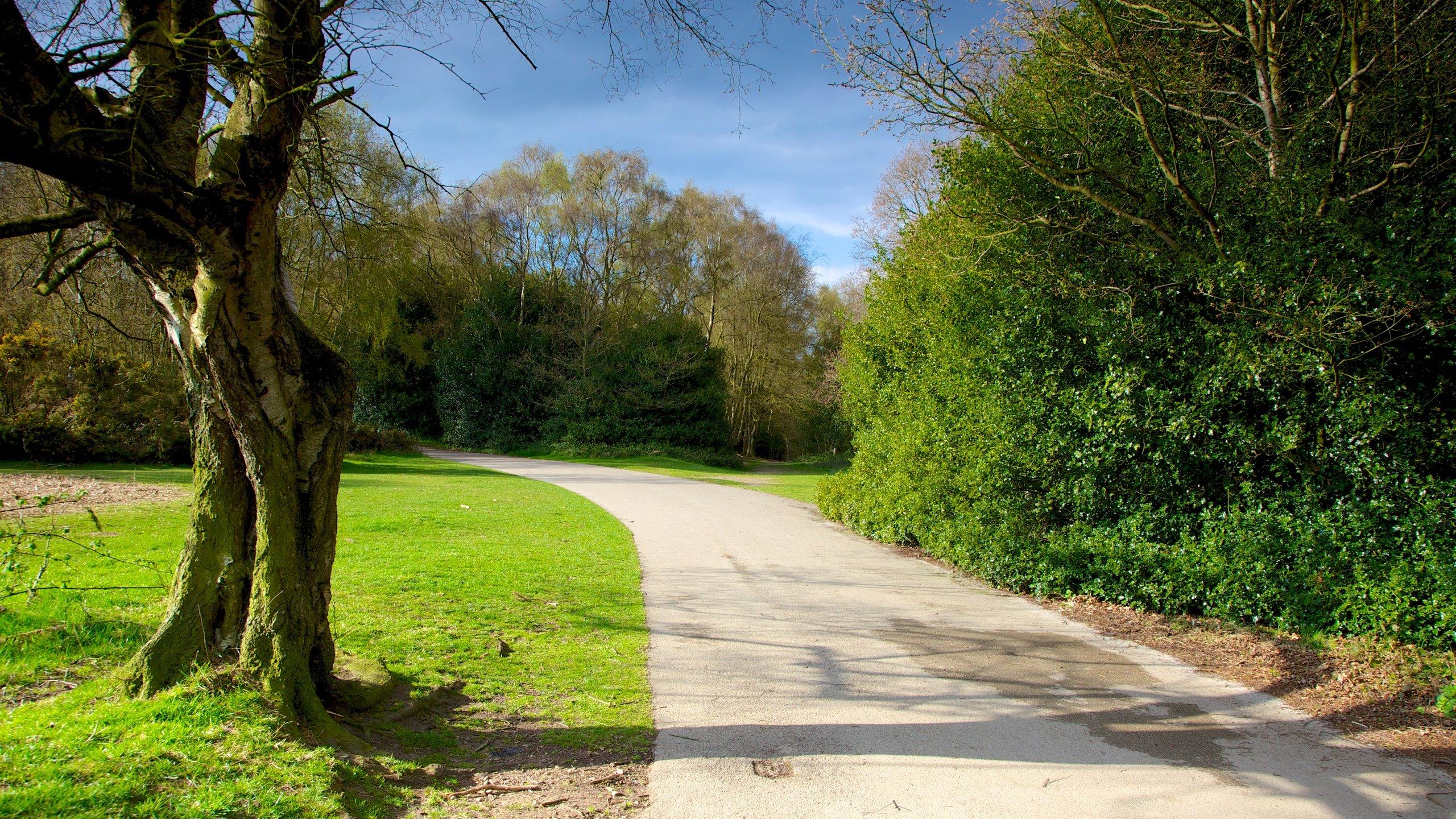 Suttonpark, Sutton Coldfield, Engeland, Verenigd Koninkrijk