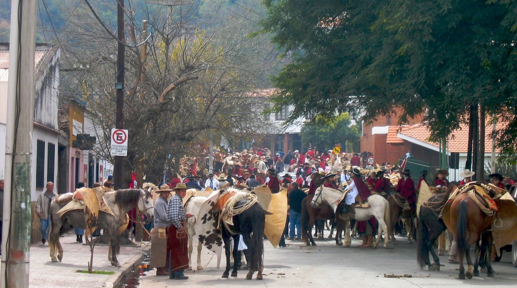 Salta which includes a small town or village, street scenes and horse riding