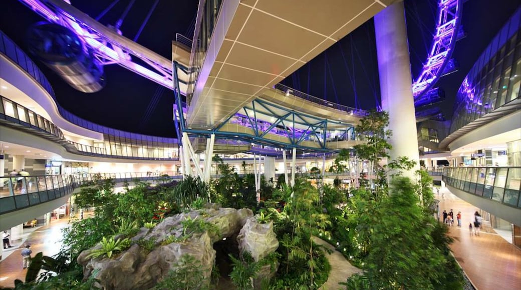 Singapore Flyer which includes night scenes, modern architecture and interior views