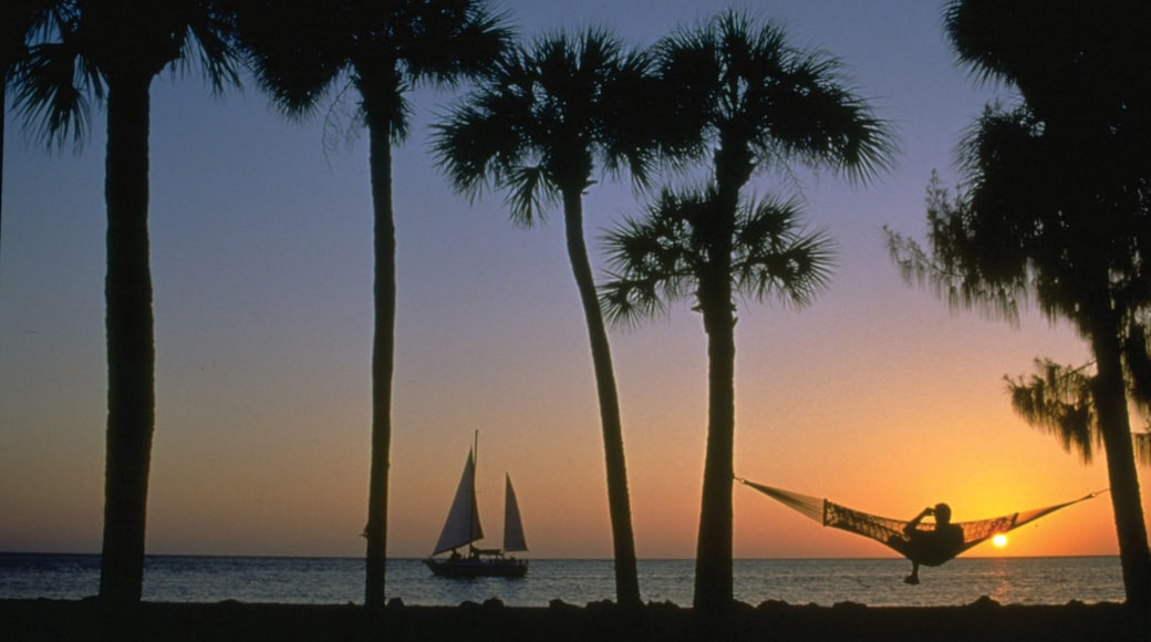 Siesta Key showing a sunset, landscape views and general coastal views