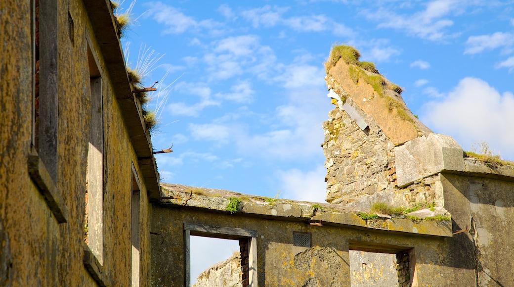 Charles Fort welches beinhaltet historische Architektur und Ruine