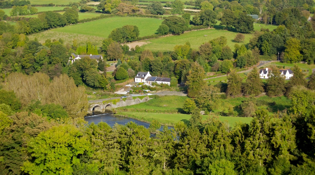 Ireland showing farmland, tranquil scenes and a small town or village
