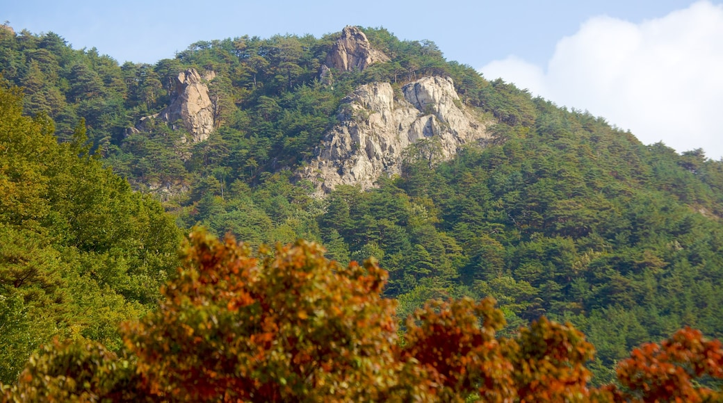 Seorak-san National Park which includes mountains, landscape views and forest scenes