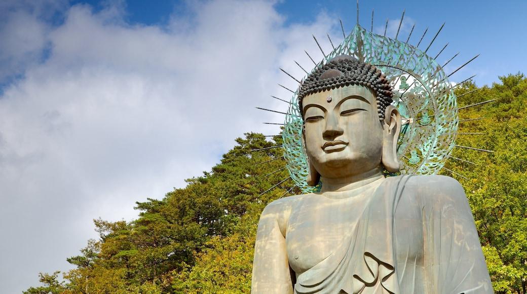 雪嶽山國家公園 其中包括 雕像或雕塑, 宗教方面 和 公園