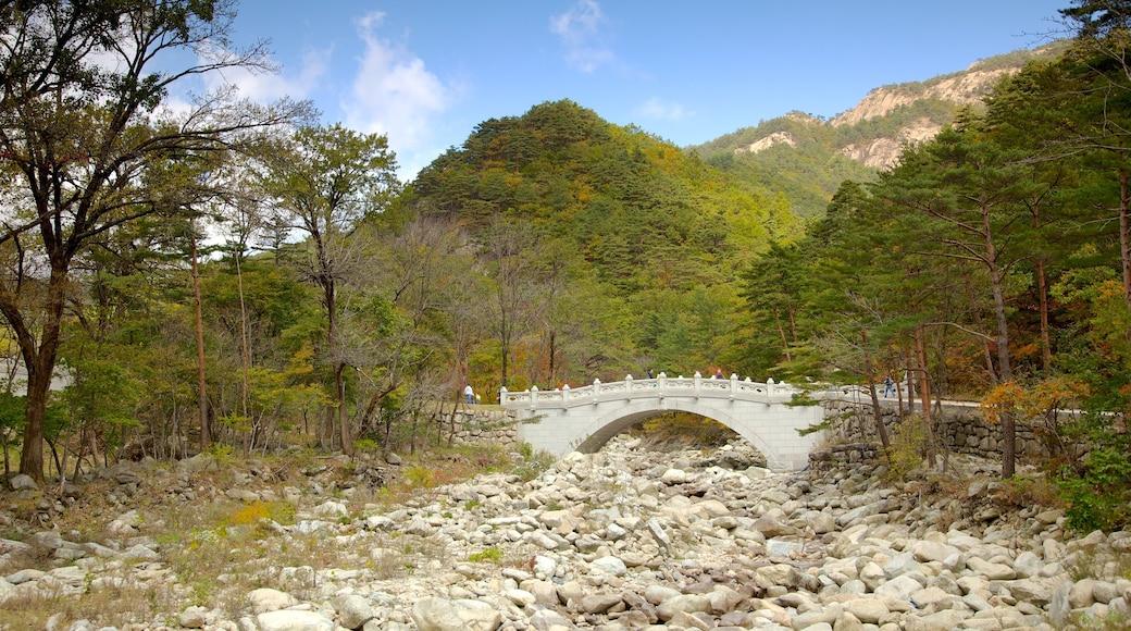 雪嶽山國家公園 设有 公園, 山 和 橋樑