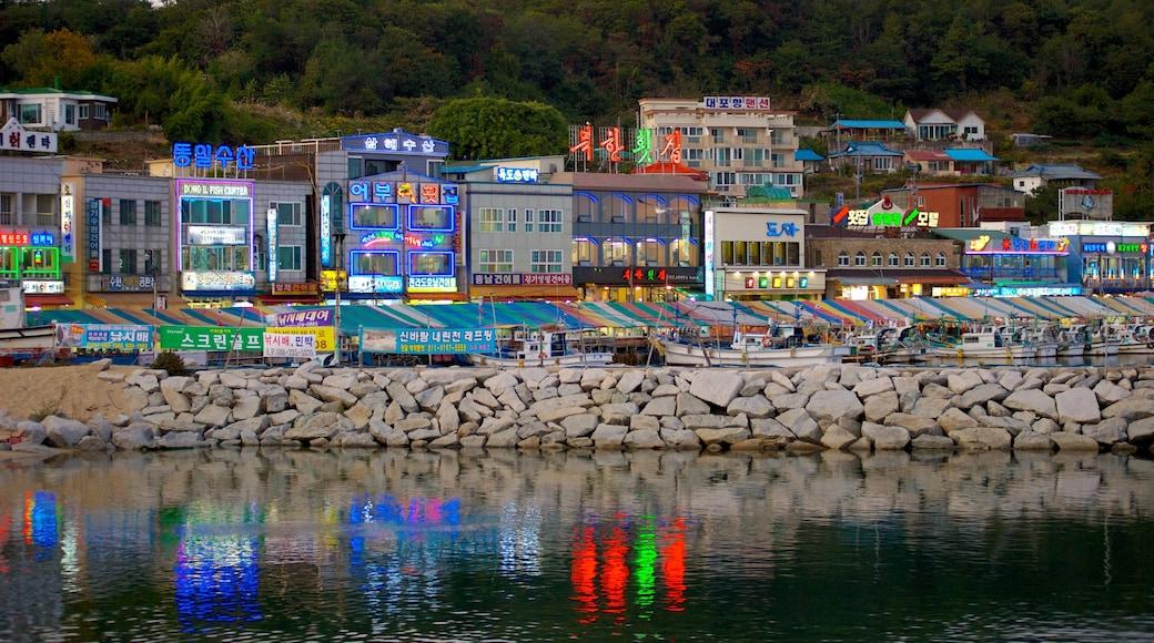 Sokcho which includes rugged coastline and a coastal town