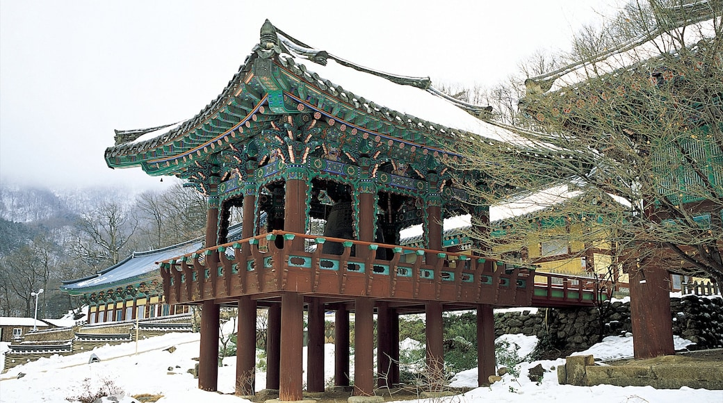 Sinheungsa Temple showing snow, a temple or place of worship and heritage architecture