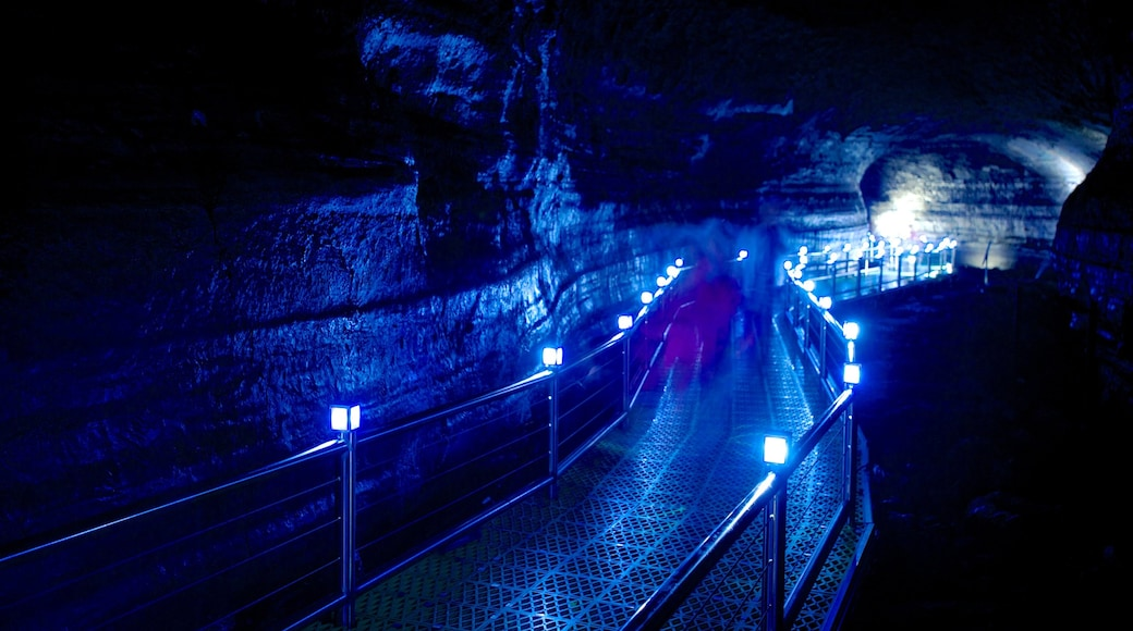 Manjanggul Lava-tube Cave which includes caving and caves