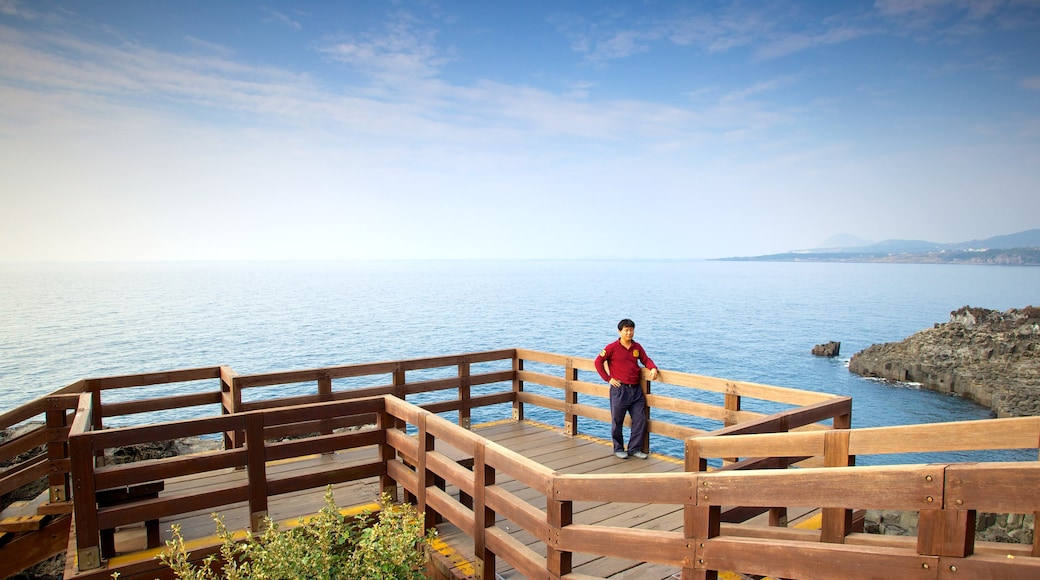 Jeju Island which includes views, general coastal views and landscape views