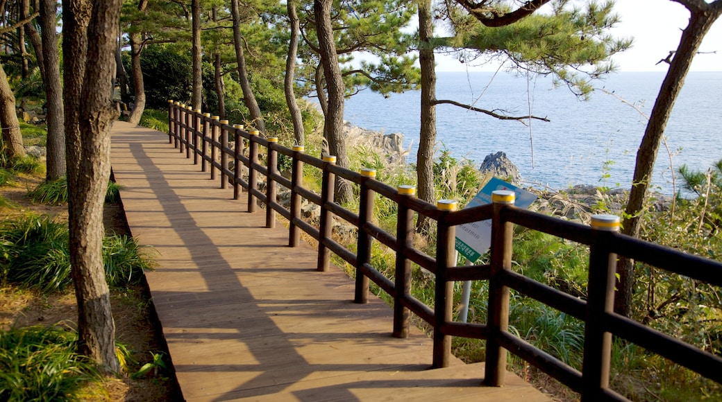 Jeju Island featuring landscape views, a garden and general coastal views