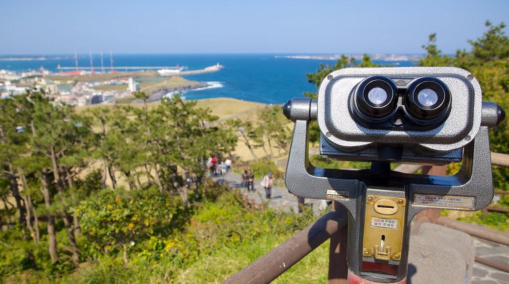 城山日出峰 呈现出 綜覽海岸風景, 景觀 和 山水美景