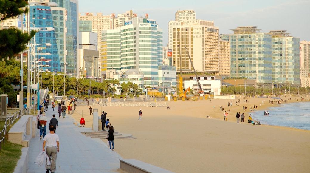 Haeundae Beach featuring a coastal town and a beach